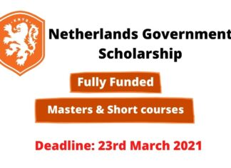 Netherlands Government Scholarship